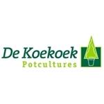 De-Koekoek-Potcultures