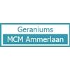 MCM-Ammerlaan
