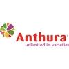 Anthura-BV