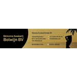 Skimmia-kwekerij-Bolwijn-BV