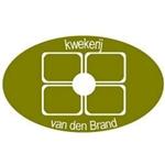Kwekerij-van-den-Brand-VOF
