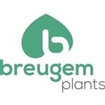 Breugem-Plants-BV