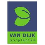 Van-Dijk-Potplanten