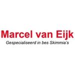 Boomkwekerij-Marcel-van-Eijk