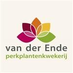 Perkplantenkwekerij-van-der-Ende