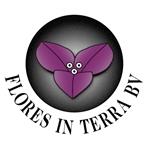 Flores-in-Terra-BV