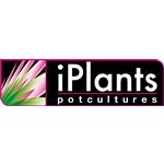 iPlants--Potcultures-