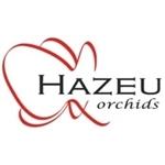 Hazeu-Orchids