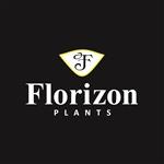 Florizon