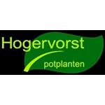 Fa-A-en-R-Hogervorst
