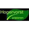 Hogervorst-Potplanten