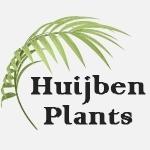 Huijben-Plants