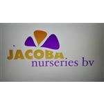 Jacoba-Nurseries-BV