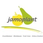 Jamoplant-BV
