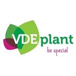 VDE-plant