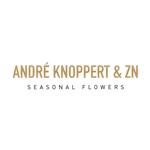 Andre-Knoppert-en-Zn