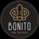 Bonito-Plant