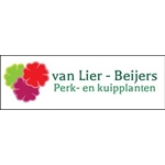 Mts-van-Lier-Beijers