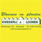 Kwekerij-Loonen