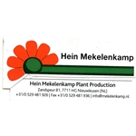 Mekelenkamp-Plantproduction