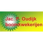 JacP-Oudijk