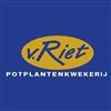 Van-Riet-Potplantenkwekerij