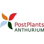 Postplants