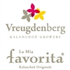 Kwekerij-Vreugdenberg