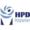 Vireõ---HPD-Potplanten