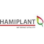 Hamiplant-BV