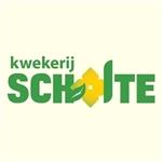 Kwekerij-Scholte