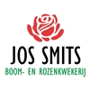 Jos-Smits-Boom--en-Rozenkwekerij