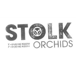 Stolk-Orchids