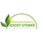 Plantenkwekerij-Joost-Sterke-BV