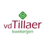 vd-Tillaer-Kwekerijen