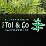 Van-Tol-en-Co-Boomkwekerijen