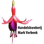 Hkw-Mark-Verbeek