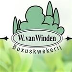 Buxuskwekerij-Wim-van-Winden-BV