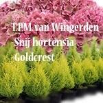 Firma-TPM-van-Wingerden