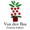 Van-den-Bos-Premium-Ardisias