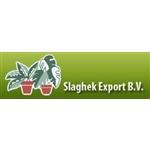Slaghek-Export-BV