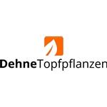 Dehne-Topfpflanzen-GmbH-en-Co