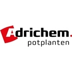 Adrichem-potplanten