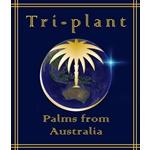 Tri-plant