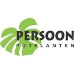 Persoon-Potplanten