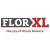 Flor-XL