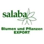 Salaba
