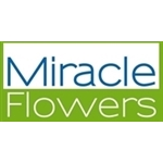 Miracle-Flowers