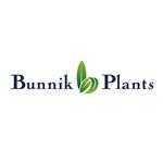 Bunnik-Plants