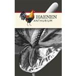 Haenen-Anthurium